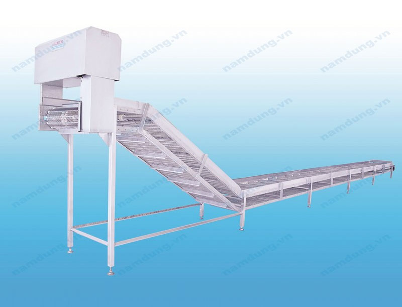 BONE & HEAD COLLECTING CONVEYOR